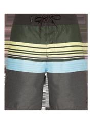 Baxter Swim shorts