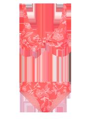 Polestar Triangle bikini